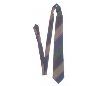 Pánská kravata Ewening Wear
